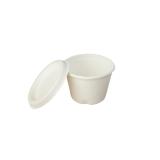 Portionbecher aus Zuckerrohr, mit Deckel, 120 ml, weiß